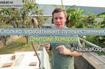 Сколько зарабатывает Дмитрий Комаров